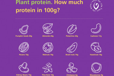 Nuts and Plant Protein